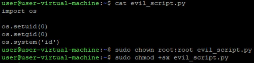 A screenshot of evil python script