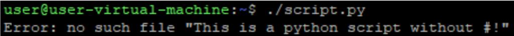 Screenshot of error without shebang