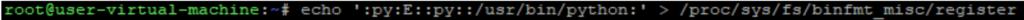 Screenshot of binfmt_misc python interpreter