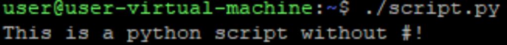 Image of working python script without shebang