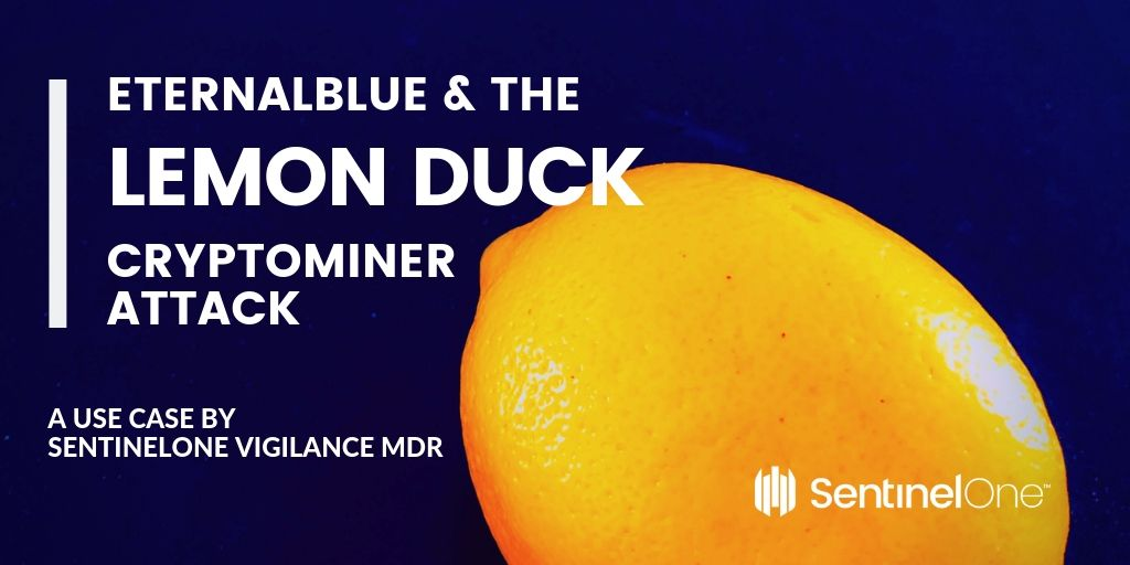 image of lemon duck