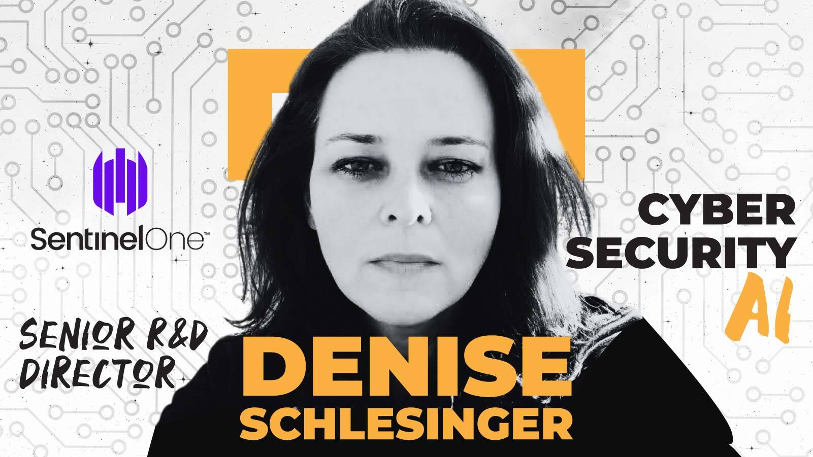 How To Build A Great Data Team   A Q&A  With Denise Schlesinger